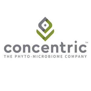 logo-concentric-300px
